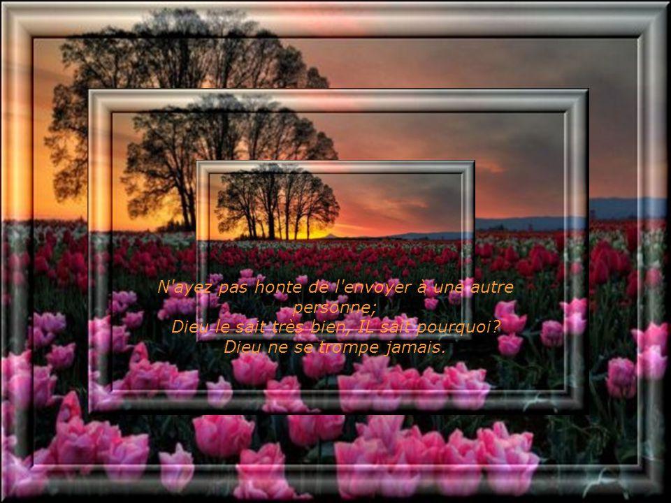 Le chemin de Dieu est parfait et sa parole, sans impuretés. IL est le chemin de tous ceux qui se confient en Lui. Sûrement que le message vous est arr