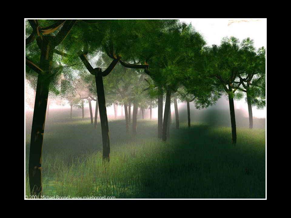 Le troisième arbre fut débité en larges pièces de bois, et abandonné dans un coin. Les années passèrent et les arbres oublièrent leurs rêves passés.