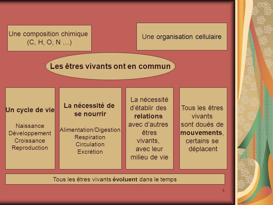 5 Les êtres vivants ont en commun Une composition chimique (C, H, O, N …) Un cycle de vie Naissance Développement Croissance Reproduction La nécessité