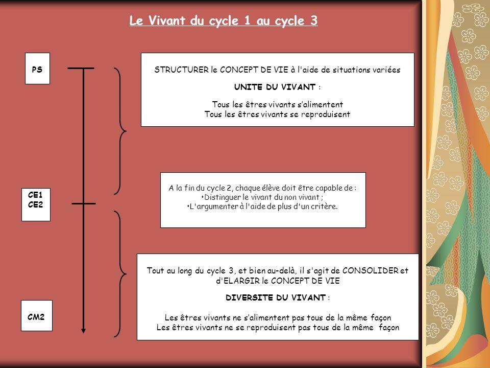 CM2 CE1 CE2 PS Un palier d'évaluation A la fin du cycle 2, chaque élève doit être capable de : Distinguer le vivant du non vivant ; L'argumenter à l'a