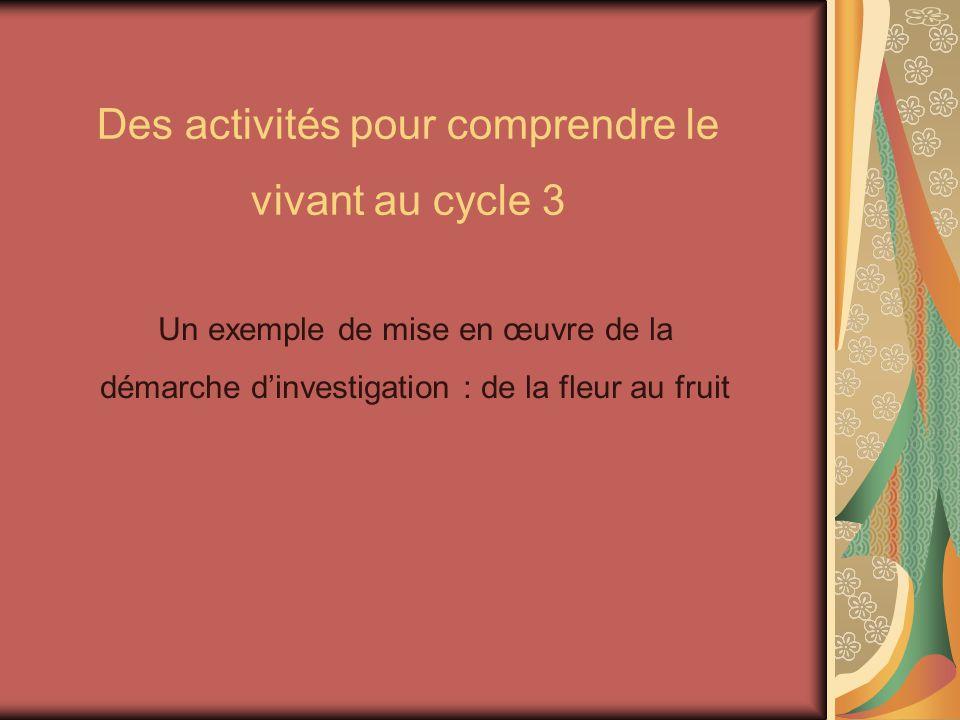 Des activités pour comprendre le vivant au cycle 3 Un exemple de mise en œuvre de la démarche dinvestigation : de la fleur au fruit