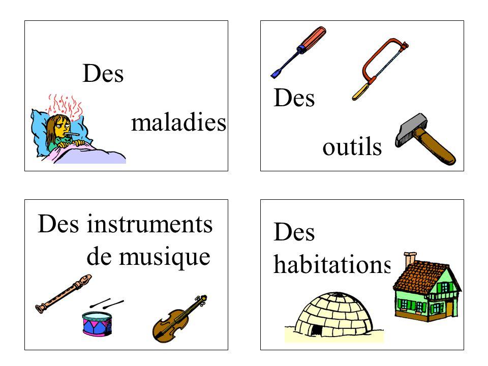 Des instruments de musique Des maladies Des outils Des habitations