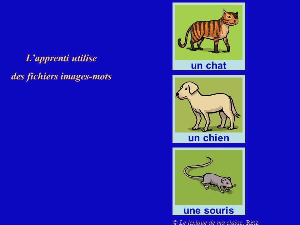 Lapprenti utilise des fichiers images-mots un chat un chien une souris © Le lexique de ma classe. Retz