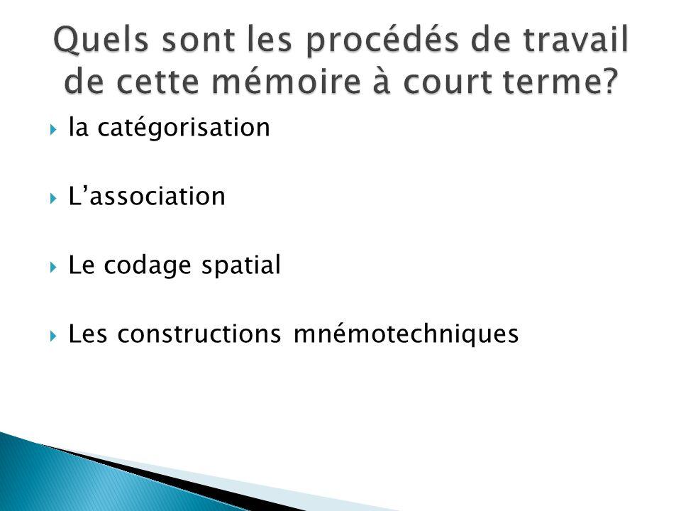 la catégorisation Lassociation Le codage spatial Les constructions mnémotechniques