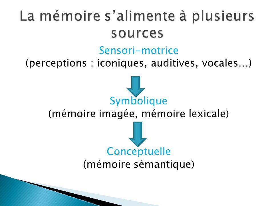 Sensori-motrice (perceptions : iconiques, auditives, vocales…) Symbolique (mémoire imagée, mémoire lexicale) Conceptuelle (mémoire sémantique)