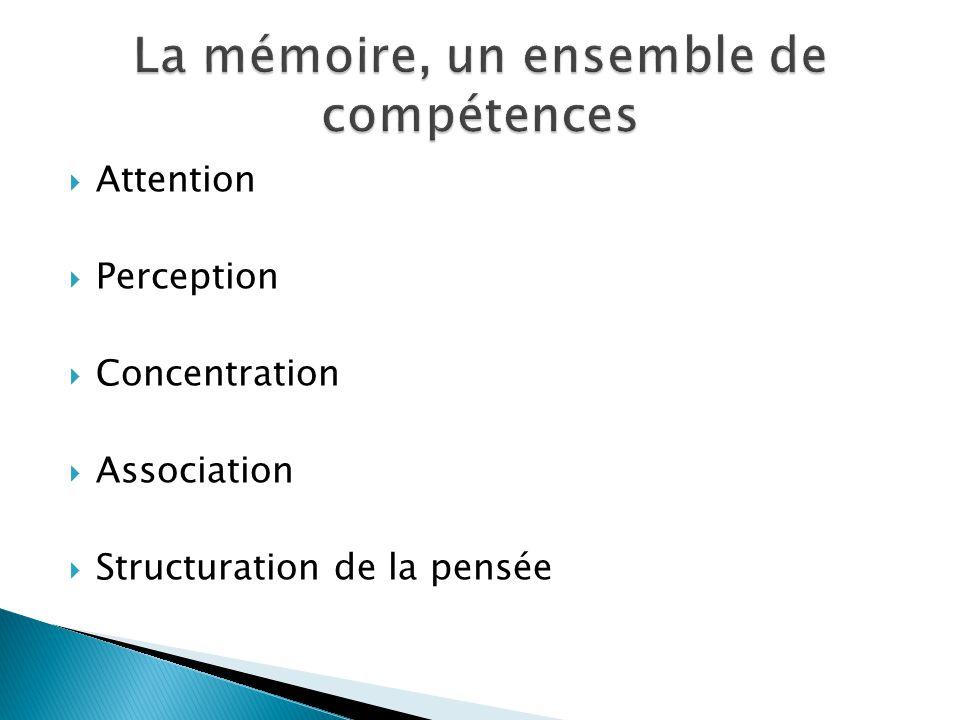 Attention Perception Concentration Association Structuration de la pensée