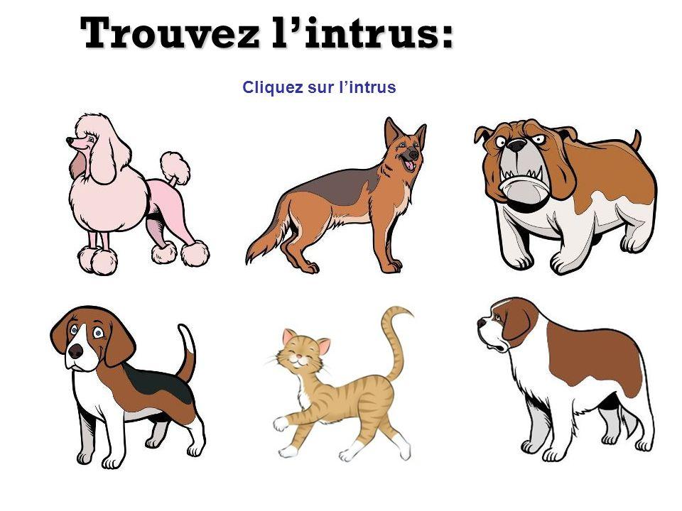 Trouvez lintrus: Cliquez sur lintrus Indice: moustache