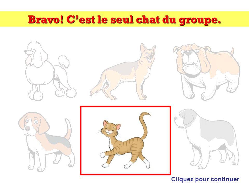 Bravo! Gaston Lagaffe nest pas un personnage des albums de Tintin et Milou Cliquez pour continuer