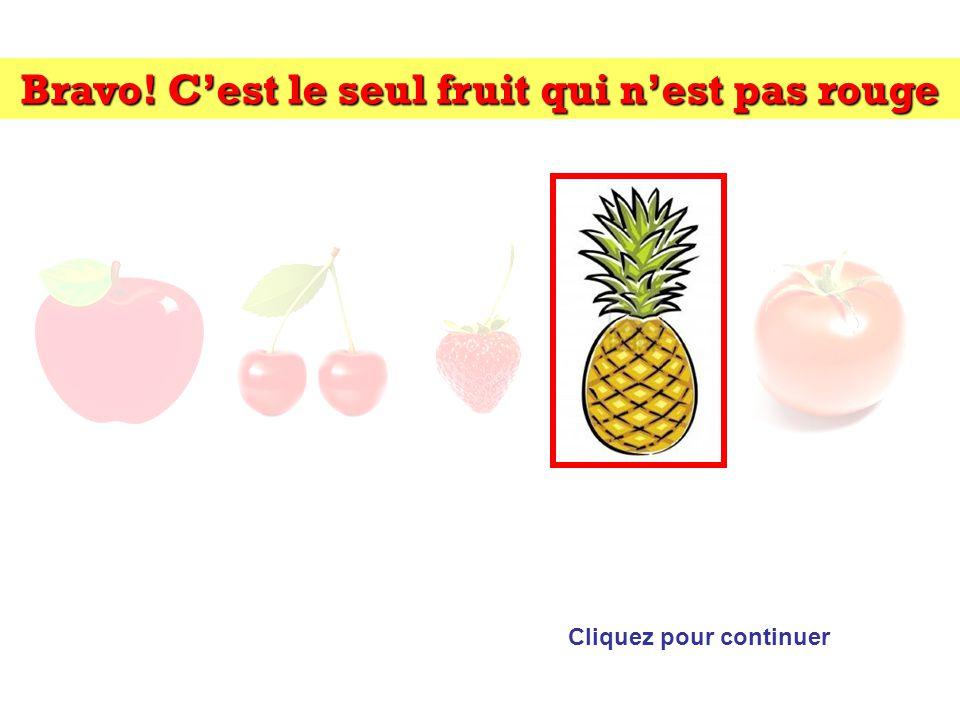 Bravo! Cest le seul fruit qui nest pas rouge Cliquez pour continuer