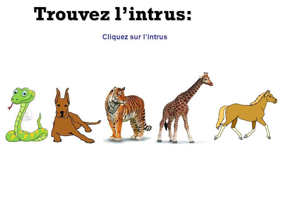 Trouvez lintrus: Cliquez sur lintrus ChevreuilChèvre GazelleMoutonVache Bison