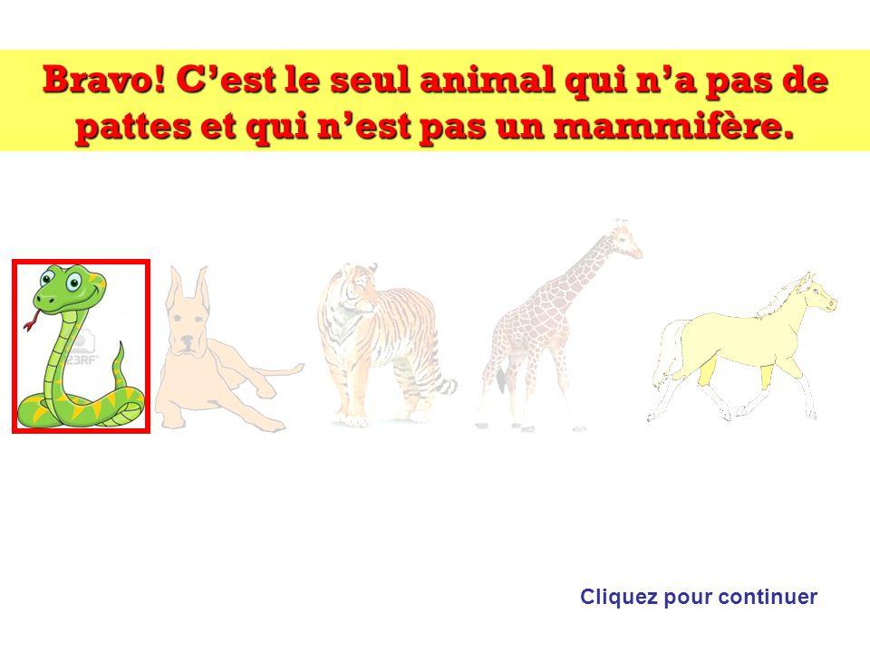 Bravo.Cest le seul animal qui na pas de pattes et qui nest pas un mammifère.