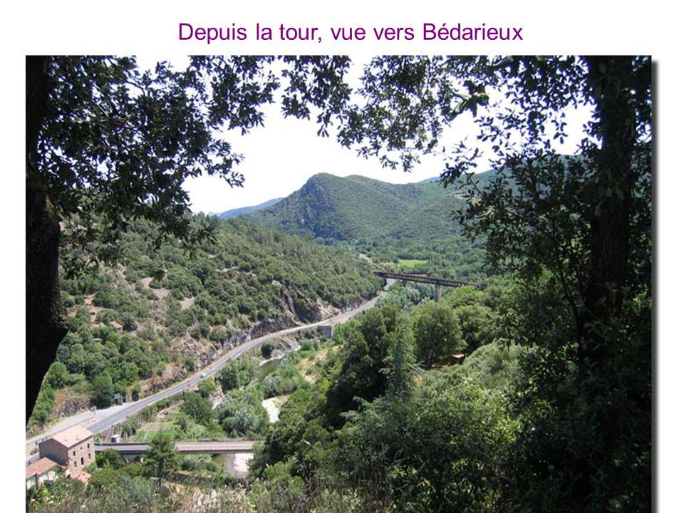 Depuis la tour, vue vers Bédarieux