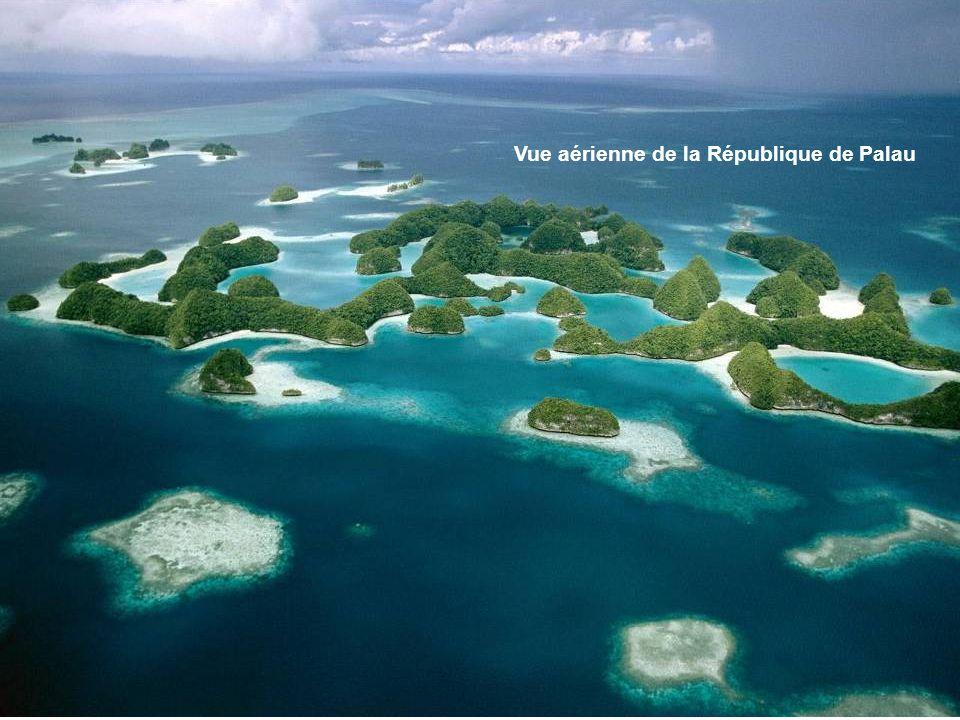 La République des Palaos, est composé d'une chaîne d'environ 200 îles, située dans l'océan Pacifique, à environ 650 kilomètres au sud des Philippines,