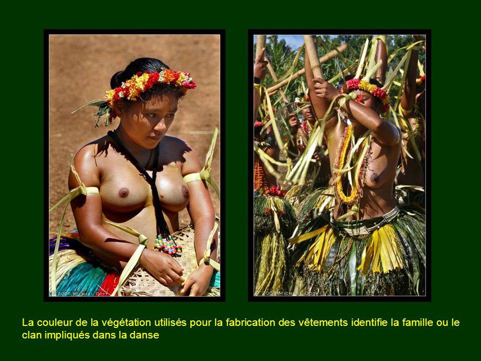 La danse (ulekbut el ngloik) La danse de Palau et des îles Yap se compose de deux parties: la première est la «mère de danse