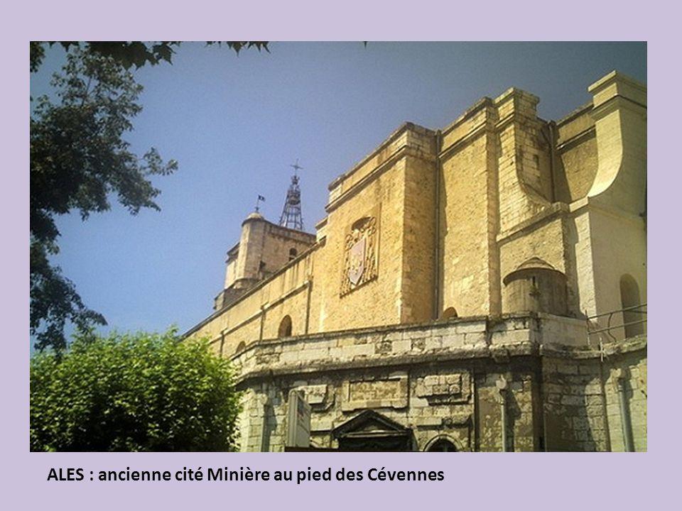 PERPIGNAN : entre mer et montagne, ville au riche patrimoine: Palais des Rois de Majorque (1274) de style gothique avec arcades ogivales.