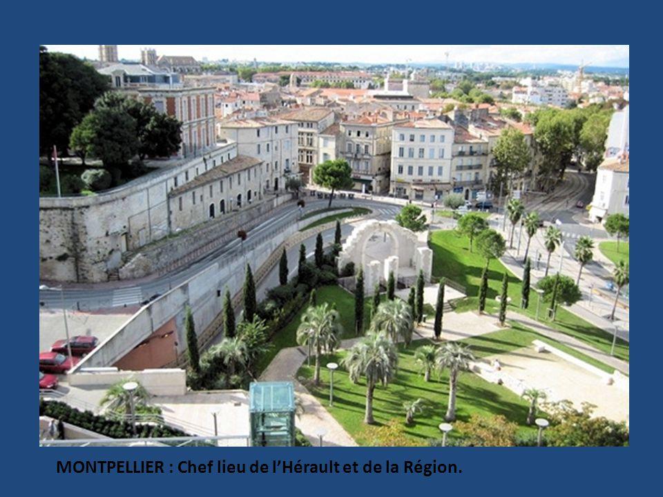 MONTPELLIER : Chef lieu de lHérault et de la Région.