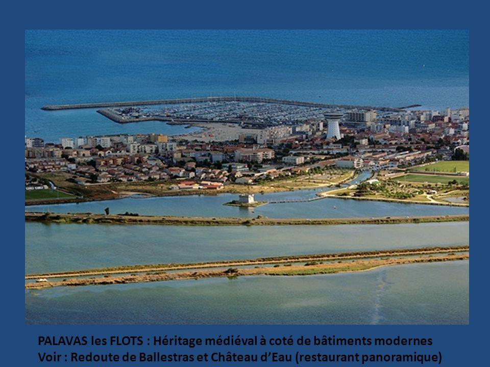BEAUCAIRE : Hôtels particuliers et Façades des 17 et 18°.