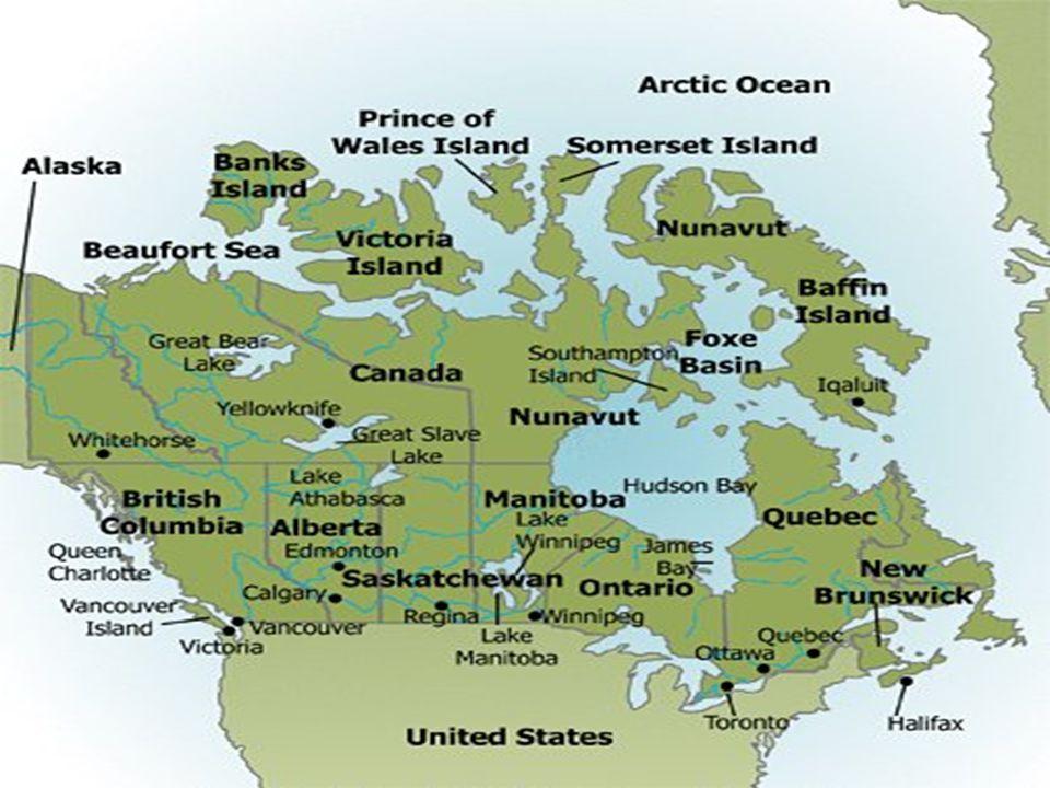 Athabasca, le glacier