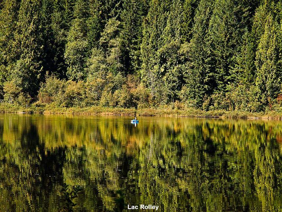Quite Lake
