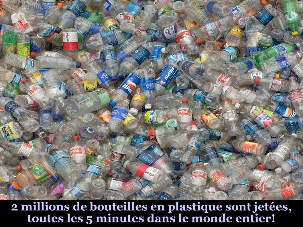 2 millions de bouteilles en plastique sont jetées, toutes les 5 minutes dans le monde entier!