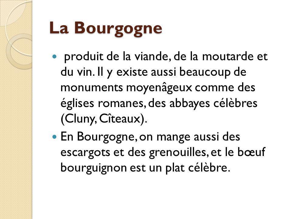 La Bourgogne produit de la viande, de la moutarde et du vin. Il y existe aussi beaucoup de monuments moyenâgeux comme des églises romanes, des abbayes