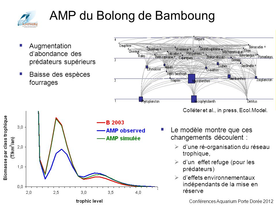 Conférences Aquarium Porte Dorée 2012 Augmentation dabondance des prédateurs supérieurs Baisse des espèces fourrages Le modèle montre que ces changeme