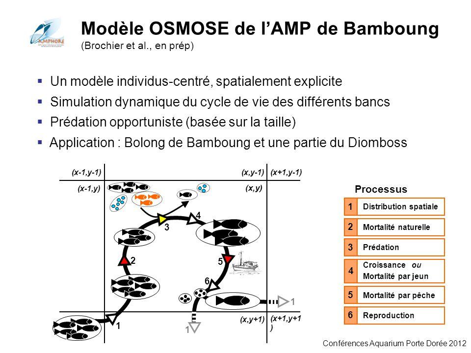 Conférences Aquarium Porte Dorée 2012 Modèle OSMOSE de lAMP de Bamboung (Brochier et al., en prép) Distribution spatiale 1 Processus Mortalité naturel