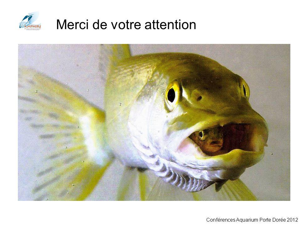 Conférences Aquarium Porte Dorée 2012 Merci de votre attention