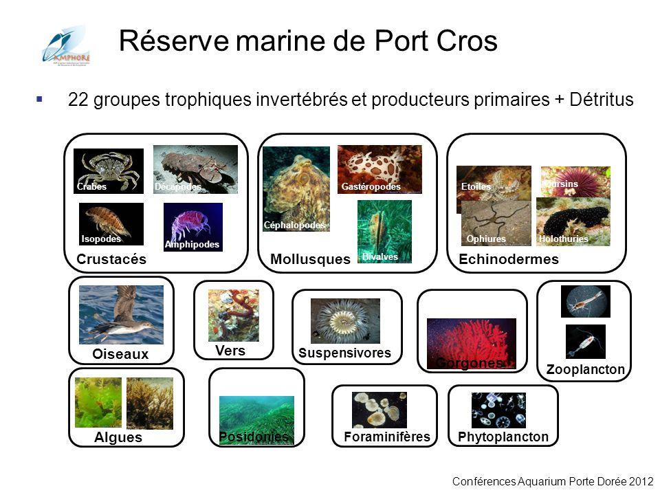 Conférences Aquarium Porte Dorée 2012 22 groupes trophiques invertébrés et producteurs primaires + Détritus Crabes CrustacésEchinodermesMollusques Ois