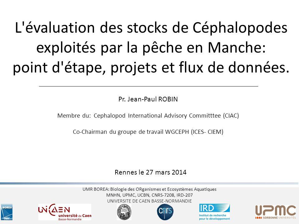 I- Introduction: les céphalopodes pêchés en Manche Amédée - Rennes 227/03/2014 Les stocks de céphalopodes de Manche sont parmi les plus importants stocks de céphalopodes d Europe.