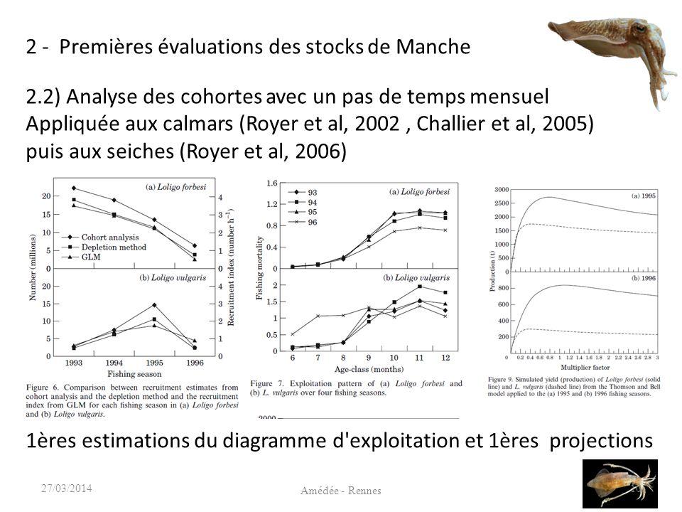 2 - Premières évaluations des stocks de Manche 10 Amédée - Rennes 27/03/2014 2.2) Analyse des cohortes avec un pas de temps mensuel Appliquée aux calmars (Royer et al, 2002, Challier et al, 2005) puis aux seiches (Royer et al, 2006) 1ères estimations du diagramme d exploitation et 1ères projections