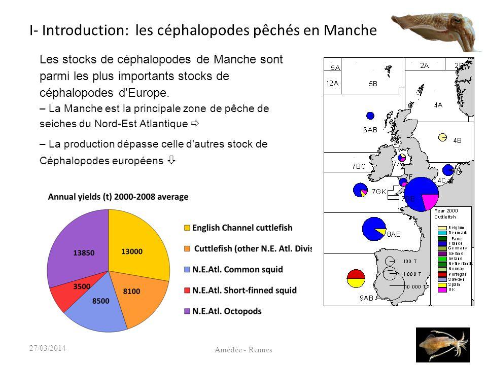 I- Introduction: les céphalopodes pêchés en Manche 327/03/2014 Source: CHARM 3, Atlas des pêcheries de la Manche Evolution des captures totales (en tonnage) 13 000 t / an (20 M ) (moyenne 2000 - 2008) Seiches Calmars 3 500 t / an (moyenne 2000 - 2008)
