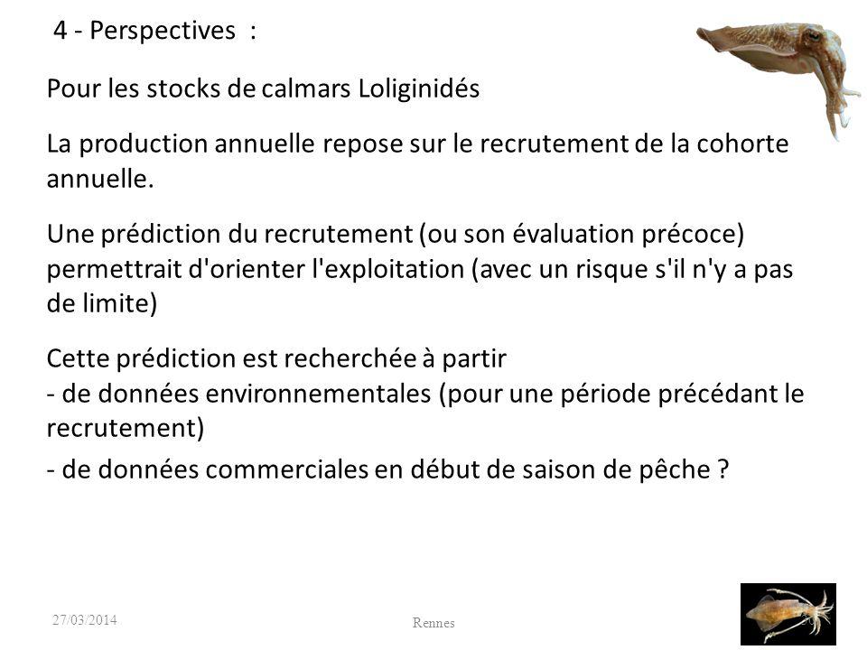 Pour les stocks de calmars Loliginidés La production annuelle repose sur le recrutement de la cohorte annuelle.