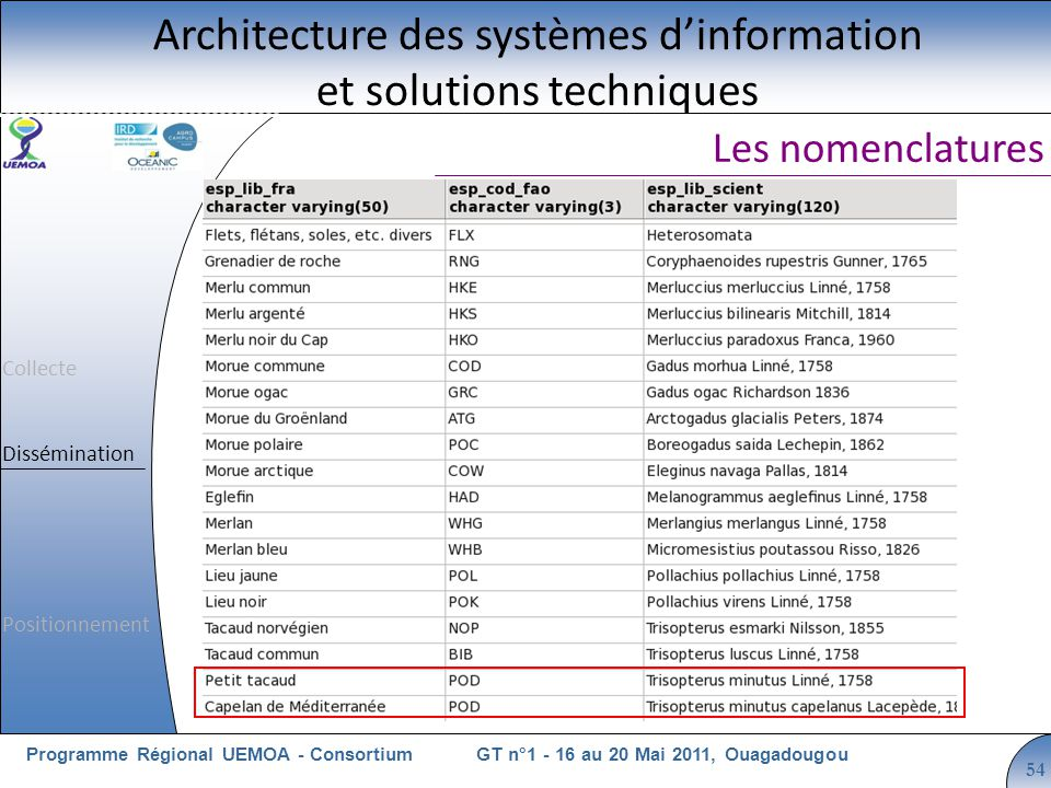 Cliquez pour modifier le style du titre GT n°1 - 16 au 20 Mai 2011, OuagadougouProgramme Régional UEMOA - Consortium 54 Les nomenclatures Architecture des systèmes dinformation et solutions techniques Collecte Dissémination Positionnement
