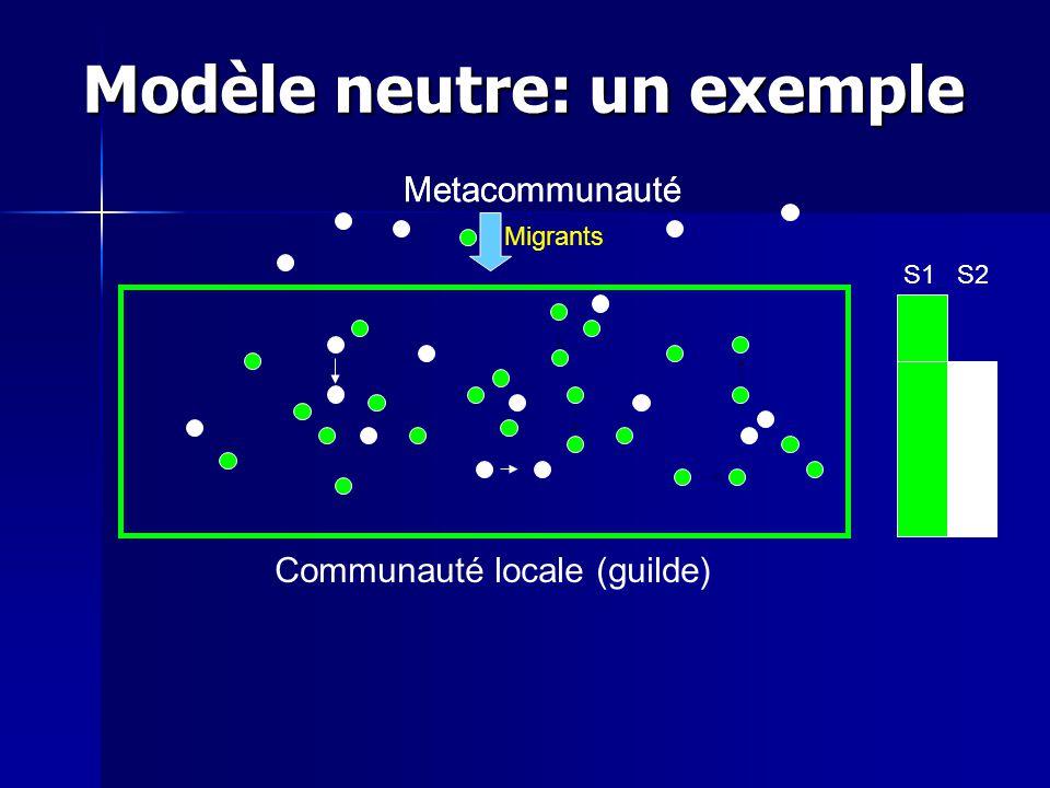 Modèle neutre: un exemple S1S2 Metacommunauté Migrants Communauté locale (guilde) Metacommunauté