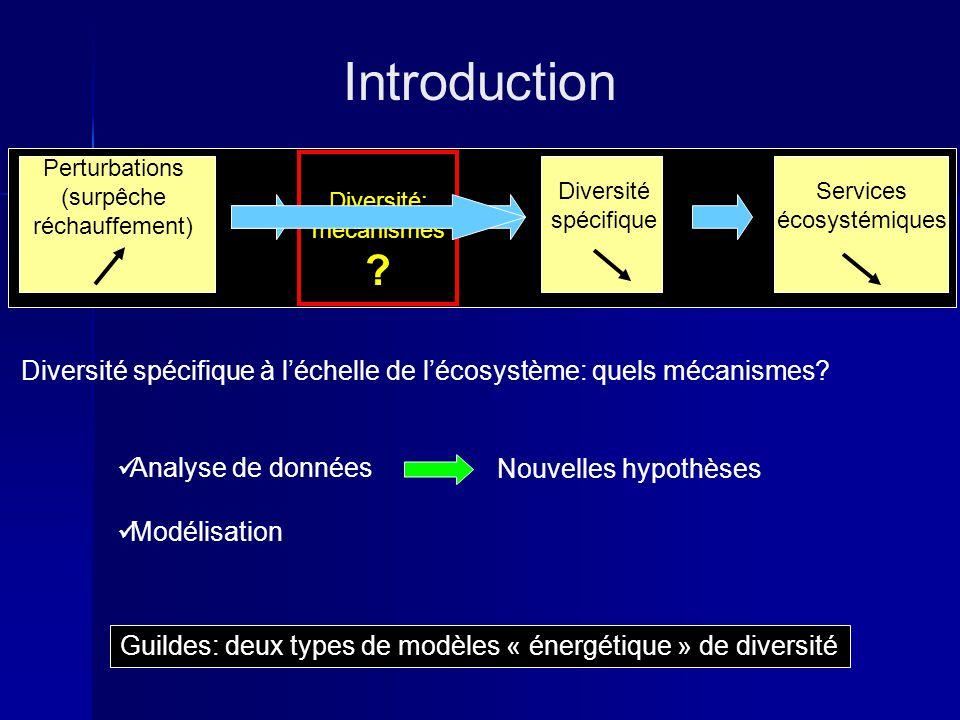 Introduction Diversité spécifique Perturbations (surpêche réchauffement) Guildes: deux types de modèles « énergétique » de diversité Services écosystémiques Diversité spécifique à léchelle de lécosystème: quels mécanismes.
