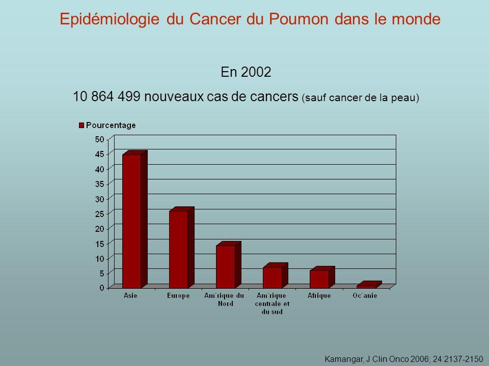 Epidémiologie du Cancer du Poumon dans le monde En 2002 10 864 499 nouveaux cas de cancers (sauf cancer de la peau) Kamangar, J Clin Onco 2006; 24:2137-2150