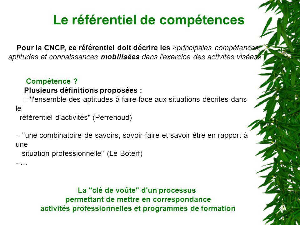 Pour la CNCP, ce référentiel doit décrire les «principales compétences, aptitudes et connaissances mobilisées dans lexercice des activités visées» Le