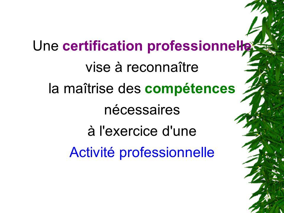 Une certification professionnelle vise à reconnaître la maîtrise des compétences nécessaires à l'exercice d'une Activité professionnelle