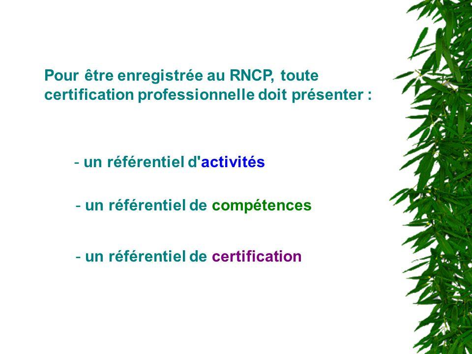 - un référentiel d'activités Pour être enregistrée au RNCP, toute certification professionnelle doit présenter : - un référentiel de compétences - un