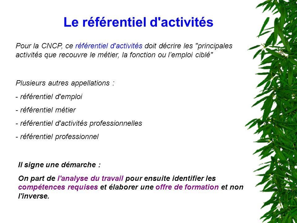 Le référentiel d'activités Pour la CNCP, ce référentiel d'activités doit décrire les