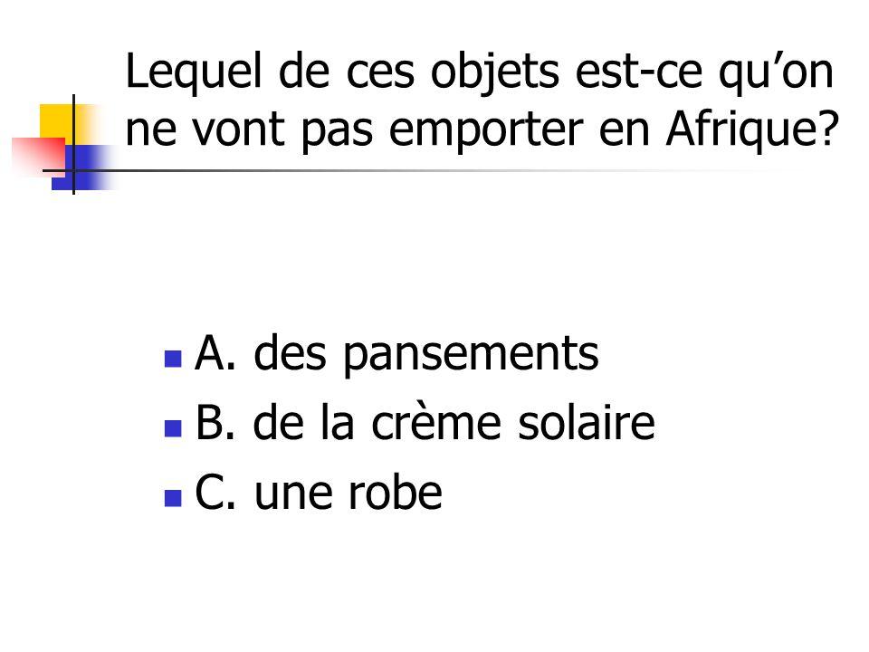 Lequel de ces objets est-ce quon ne vont pas emporter en Afrique.