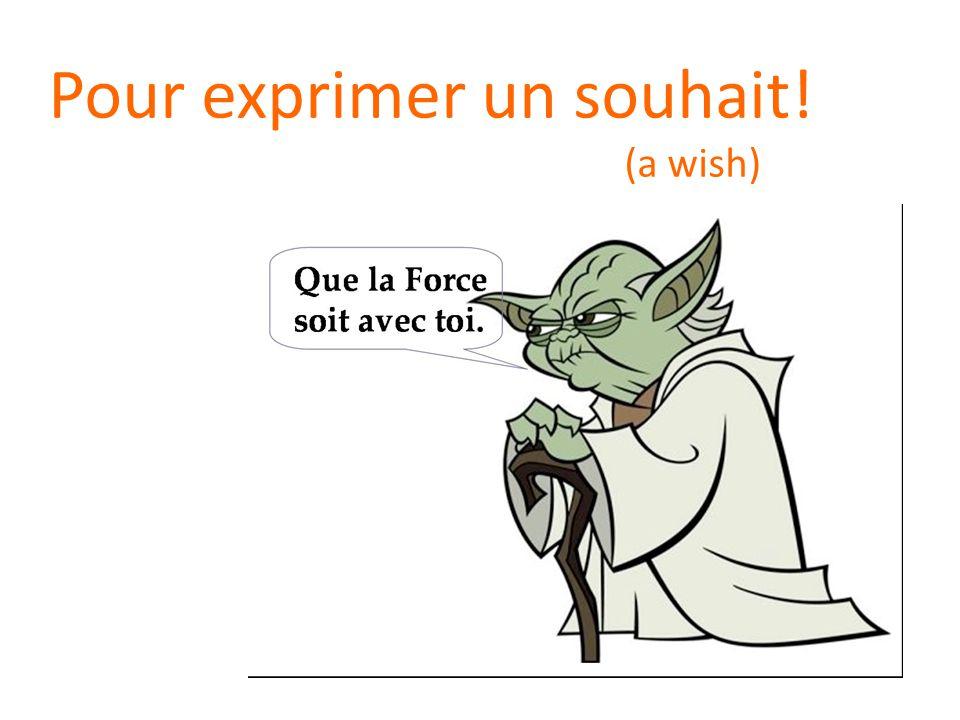 Pour exprimer un souhait! (a wish)