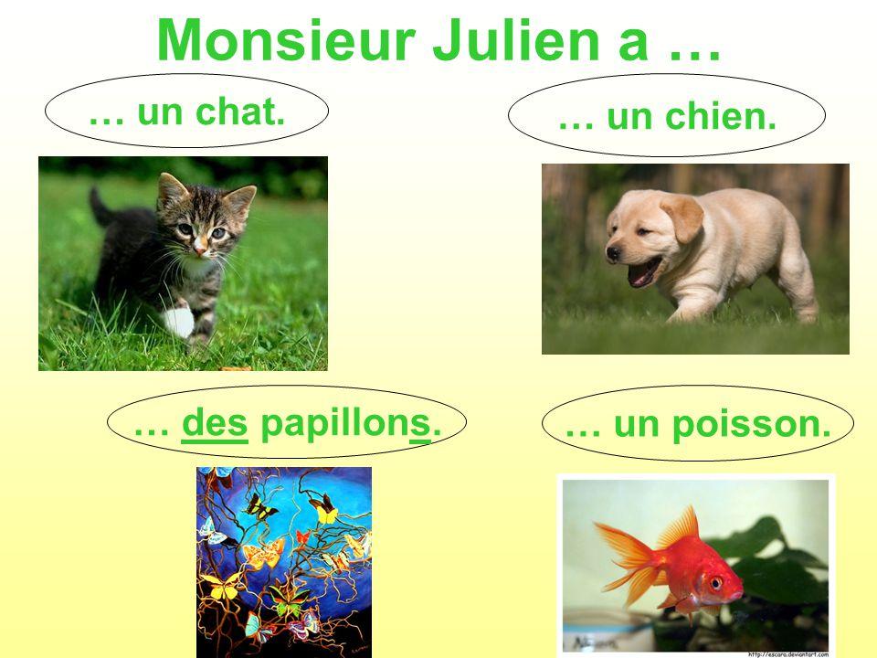Monsieur Julien a … … un chat. … un poisson. … un chien. … des papillons.