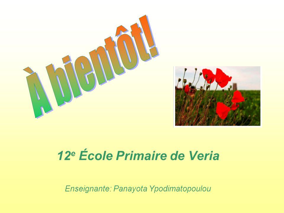 12 e École Primaire de Veria Enseignante: Panayota Ypodimatopoulou
