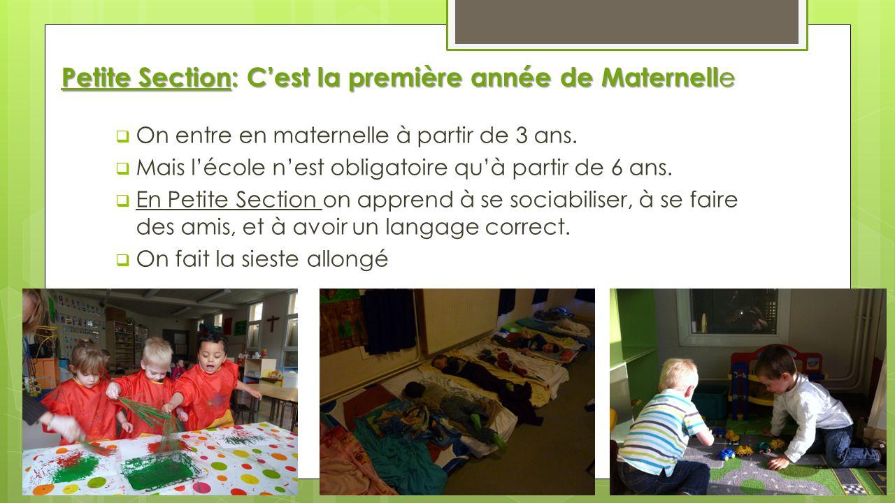 Petite Section: Cest la première année de Maternell e On entre en maternelle à partir de 3 ans. Mais lécole nest obligatoire quà partir de 6 ans. En P