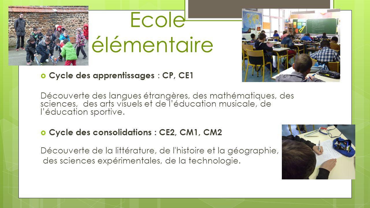 Ecole élémentaire Cycle des apprentissages : CP, CE1 Découverte des langues étrangères, des mathématiques, des sciences, des arts visuels et de léduca