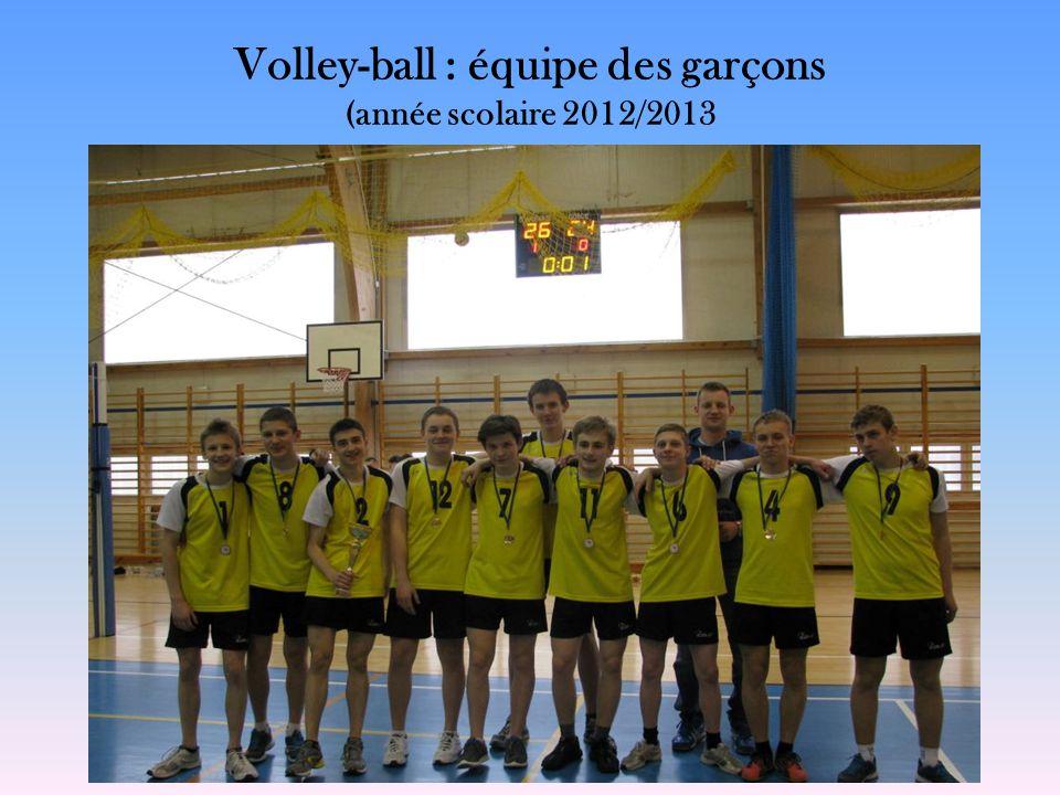Volley-ball : équipe des garçons (année scolaire 2012/2013