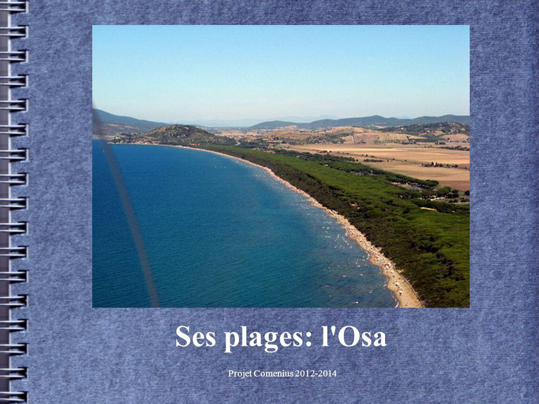 Projet Comenius 2012-2014 Ses plages: l Osa