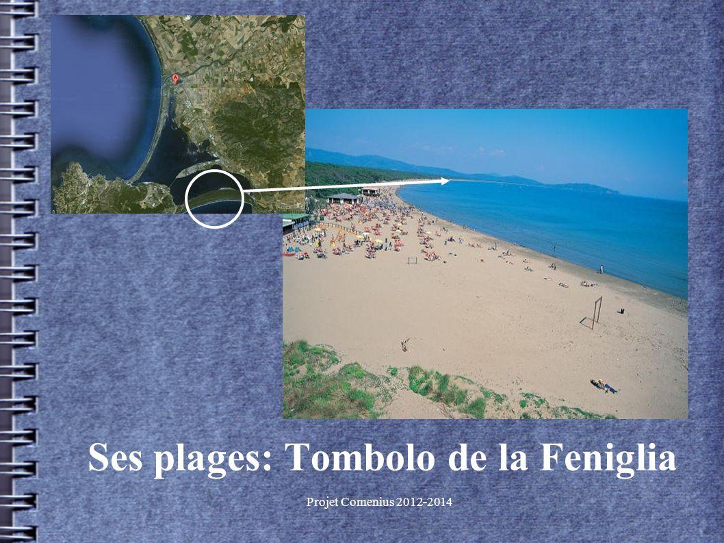 Projet Comenius 2012-2014 Ses plages: Tombolo de la Feniglia